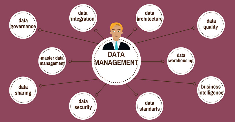 competences-data-management